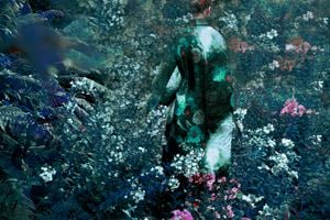 Untitled 3 from the series 'The Garden' by Erik Madigan Heck contemporary artwork