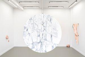 1,45 diamètre (calcinose secondaire) by Dana-Fiona Armour contemporary artwork
