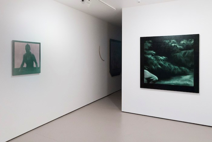 Exhibition view: Hamish Coleman, For Lack of a Better Word, Bartley + Company Art, Wellington (22 May–15 June 2019). Courtesy Bartley + Company Art.