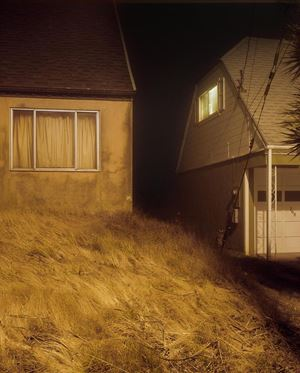 Untitled #2736 by Todd Hido contemporary artwork