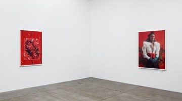 Contemporary art exhibition, Roe Ethridge, American Spirit at Andrew Kreps Gallery, 537 West 22nd Street, USA