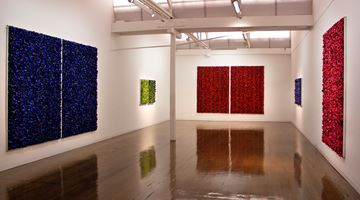 Contemporary art exhibition, Dani Marti, Blue on Blue at Arc One Gallery, Melbourne
