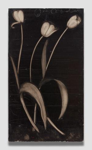 Tulips by Joe Andoe contemporary artwork