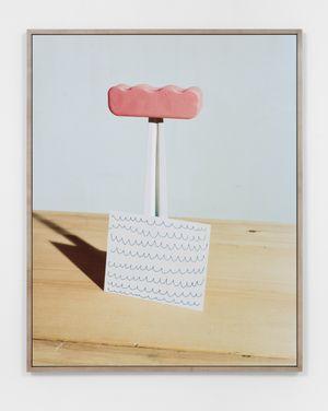 The Floridian (Urodisny) by Lucas Blalock contemporary artwork