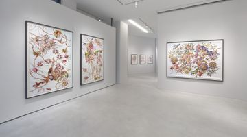 Contemporary art exhibition, Miron Schmückle, Bulb Fiction at SETAREH, Düsseldorf, Germany
