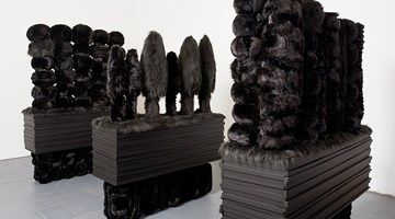 Contemporary art exhibition, Kathy Temin, Black Gardens at Roslyn Oxley9 Gallery, Sydney, Australia