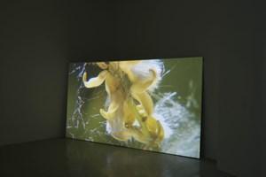 BBR1 (No. 1 of Blossom Bud Restrainer) No. 2 by Liu Chuang contemporary artwork