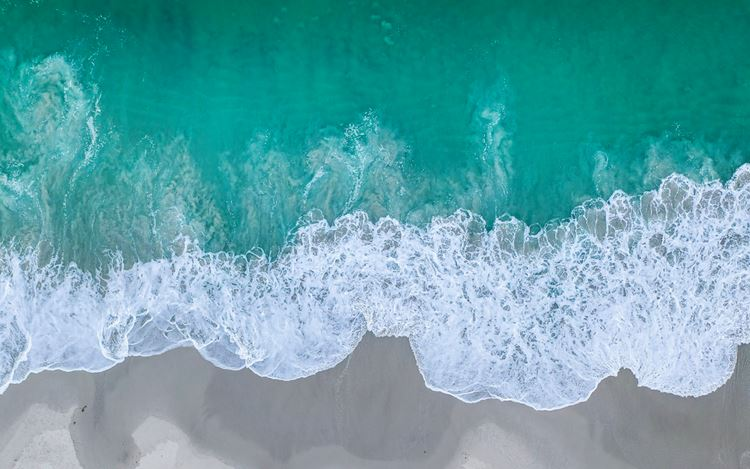 David Ondaatje, Camel Beach #5 Runner (detail). Archival pigment print. 44 x 34 inches. 1/5 + 2AP. Courtesy ROSEGALLERY.