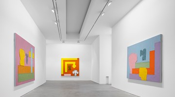 Contemporary art exhibition, Jonathan Lasker, Recent Paintings at Galerie Thomas Schulte, Berlin