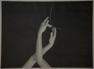 Tillandsia Usneoides fig. 12 by Genevieve Chua contemporary artwork