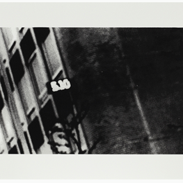Daido Moriyama contemporary artist