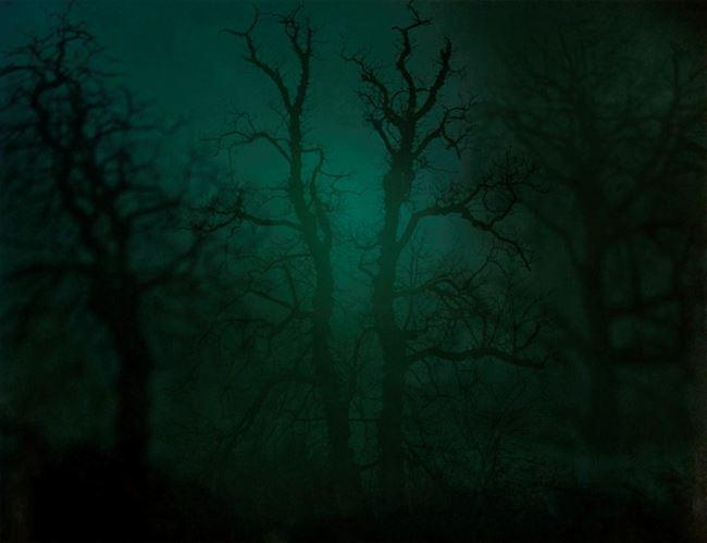 In Darkness Visible no. 14 [Verse I] by Nicholas Hughes contemporary artwork