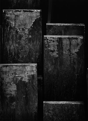 Steel Growth by Tihomir Pinter contemporary artwork photography, print