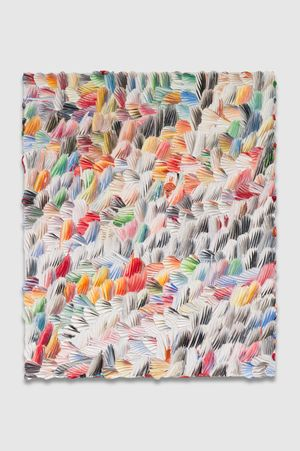 the harsh blankets by Dashiell Manley contemporary artwork