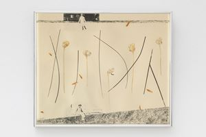 All Seasons by Rachel Rosenthal contemporary artwork works on paper, photography