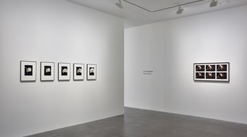 Contemporary art exhibition, Luc Tuymans, Monkey Business Online Viewing Room at David Zwirner, Online Only, New York