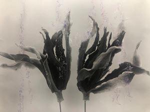 Gardenia- Pu Sa Man by Chu Chu contemporary artwork