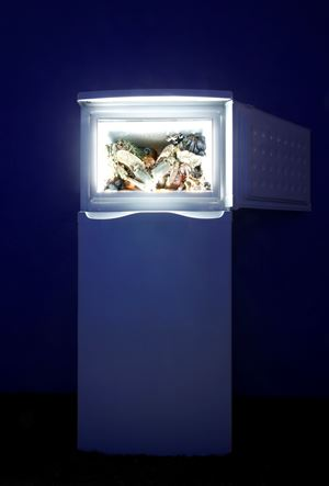 From the series The Theater of Disappearance (VIII) by Adrián Villar Rojas contemporary artwork