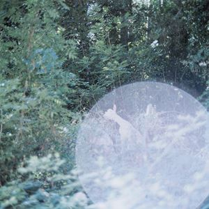 Untitled, From the series 'the eyes, the ears' by Rinko Kawauchi contemporary artwork