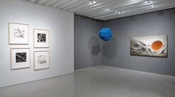 Contemporary art exhibition, Group Exhibition, The Art of Paper at Sundaram Tagore Gallery, New York