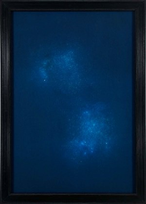 Cygnus by Max Frisinger contemporary artwork