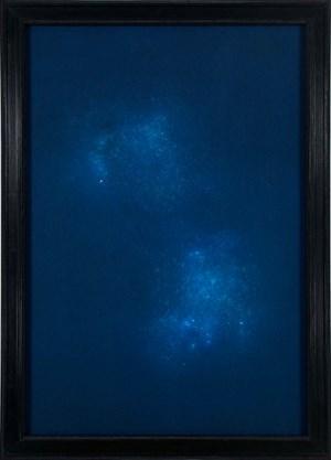 Cygnus by Max Frisinger contemporary artwork