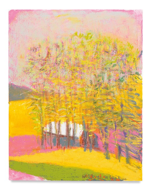 Improbable Pink Sky by Wolf Kahn contemporary artwork
