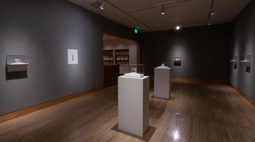 Contemporary art exhibition, Elisheva Biernoff, Starting from Wrong at Fraenkel Gallery, San Francisco