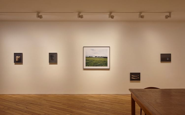 "Nao Tsuda ""Grassland Tears"", Exhibition view at Taka Ishii Gallery Photography / Film, Feb 20 – Mar 26, 2016 Photo: Kenji Takahashi."