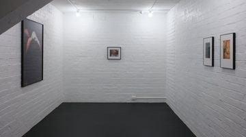 Contemporary art exhibition, Meg Porteous, Stars at Michael Lett, Auckland