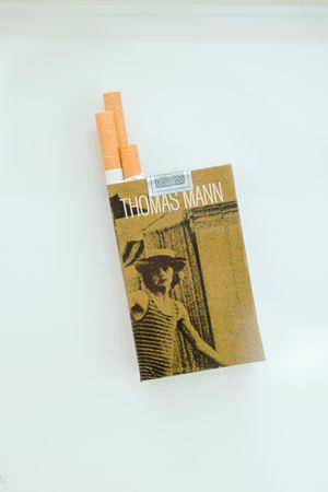Literary Smoke by Peter Wuthrich contemporary artwork