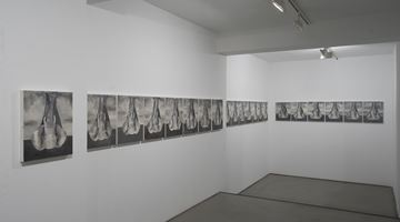 Contemporary art exhibition, Babak Golkar, The Elephant (an Intermission) at Sabrina Amrani Gallery, Madrid