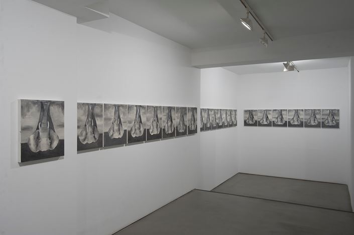 Exhibition view: Babak Golkar, The Elephant (an Intermission), Sabrina Amrani Gallery, Madera, 23, Madrid (12 September–21 December 2019). Courtesy the artist and Sabrina Amrani Gallery.