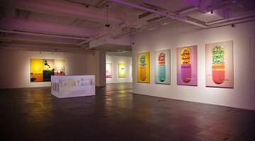 Contemporary art exhibition, Lin Jingjing, Lov-Lov Shop at de Sarthe, Hong Kong