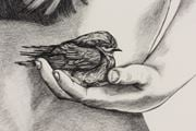 Inseparable (Welcome Swallow) by Patricia Piccinini contemporary artwork 6