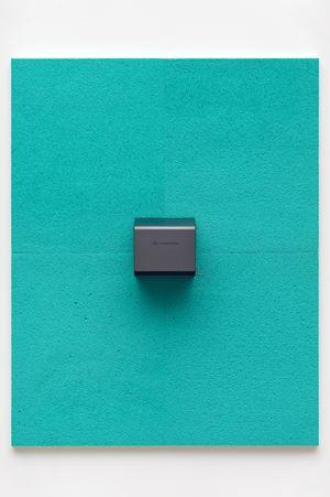 Bullnose by Adam McEwen contemporary artwork