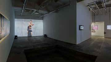 Contemporary art exhibition, Aziz Hazara, Bani Abidi, and Prabhakar Pachpute, Gardens as Thought Form: Lexicons for Revolution at Experimenter, Hindustan Road, India
