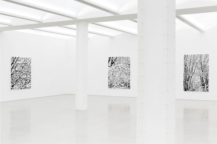 Exhibition view: Farhad Moshiri, Snow Forest, Galerie Perrotin, New York (5 November–23 December 2017). Courtesy the Artist and Galerie Perrotin. Photo: Guillaume Ziccarelli