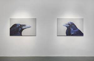 Raven Portraits by Elmas Deniz contemporary artwork