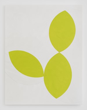 Untitled (Limes) by Sarah Crowner contemporary artwork