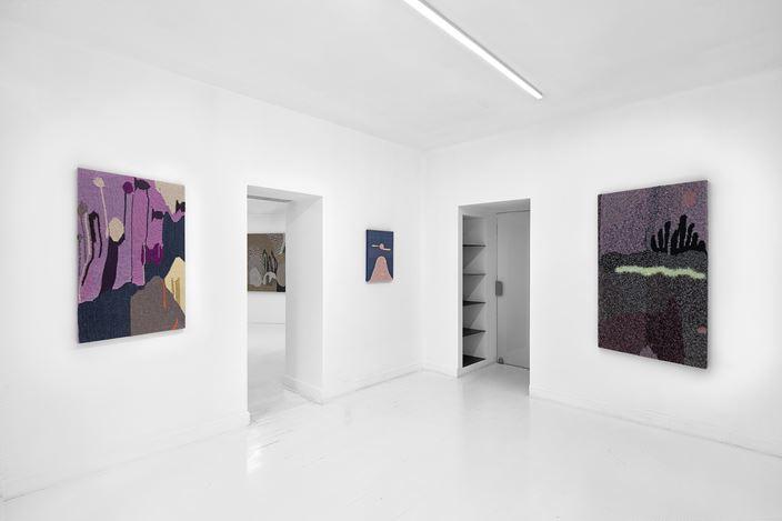 Exhibition view: Miranda Fengyuan Zhang,A World Without Us,Capsule Shanghai, Shanghai (16 January–27 February 2021). Courtesy Capsule Shanghai.