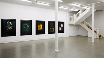 Contemporary art exhibition, Fiona Pardington, TIKI: Orphans of Māoriland at Starkwhite, Auckland