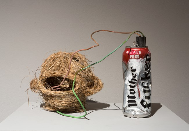 Mother Fucker (improvised explosive device) by Fiona Hall contemporary artwork