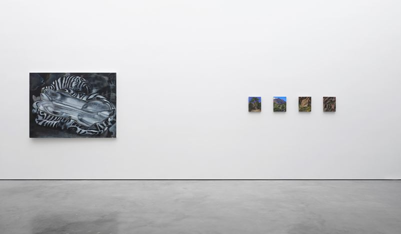 Exhibition view: Group Exhibition, The Rest, Lisson Gallery, West 24th Street, New York (12 January–16 February 2019). Courtesy Lisson Gallery.