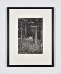 Ameisenstaat by Lothar Baumgarten contemporary artwork photography