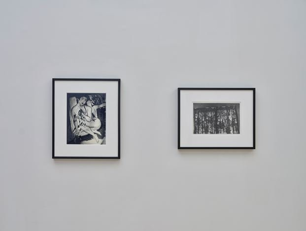 Exhibition view: Daido Moriyama, Simon Lee Gallery, Hong Kong (13 November–20 December 2019). Courtesy Simon Lee Gallery. Photo: Kitmin Lee.