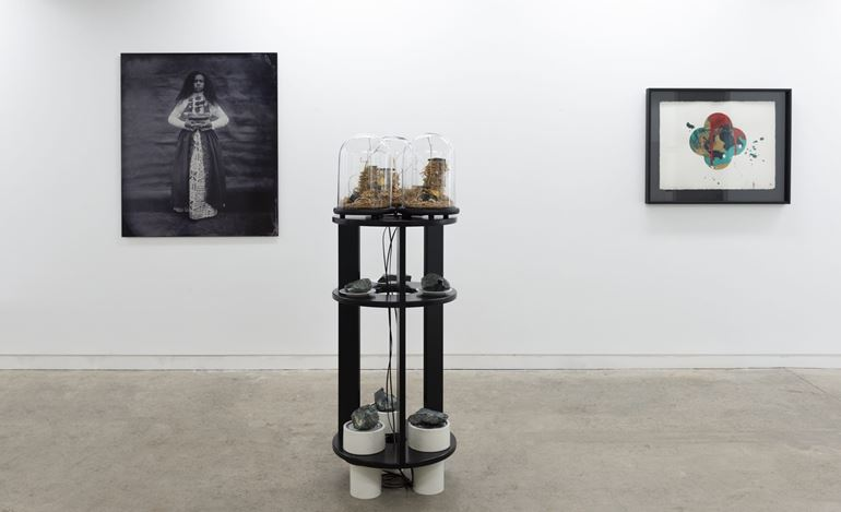 Exhibition view: Beyond Kāpene Kuku / Captain Cook, Page Blackie Gallery, Wellington (1–31 August 2019). Courtesy Page Blackie Gallery.