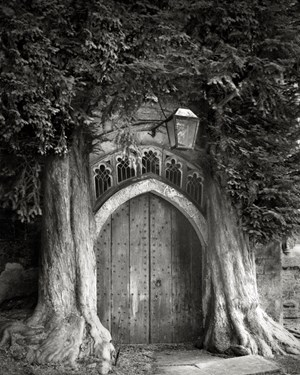 Sentinels of St. Edwards by Beth Moon contemporary artwork