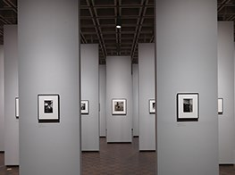 'In the beginning': Diane Arbus' early works go on show at the Met Breuer