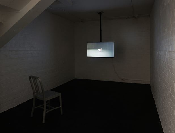 Exhibition view: Modern Nature, Michael Lett, Auckland (14 May–15 June 2019). Courtesy Michael Lett.